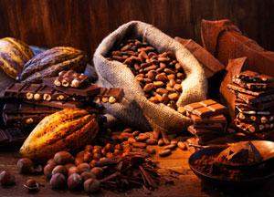Geschichtlicher Hintergrund der Schokolade