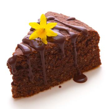 Schokoladenkuchen © Swetlana Wall - Fotolia.com