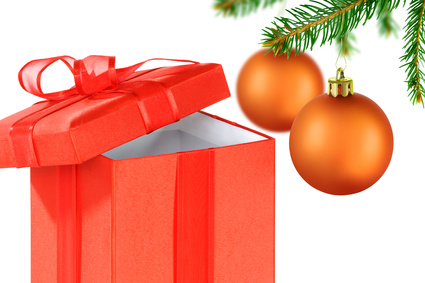 Weihnachtslieferung © K.-U. Häßler - Fotolia.com